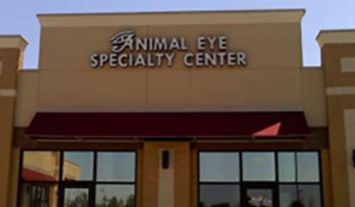 Scott Build Veterinary Gallery Animal Eye Specialty Clinic 2