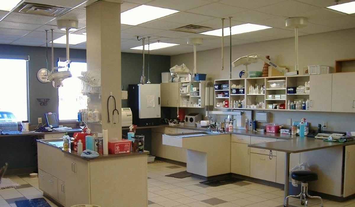 Scott Build Veterinary Gallery Companion Animal Hospital Buffalo Mn 3
