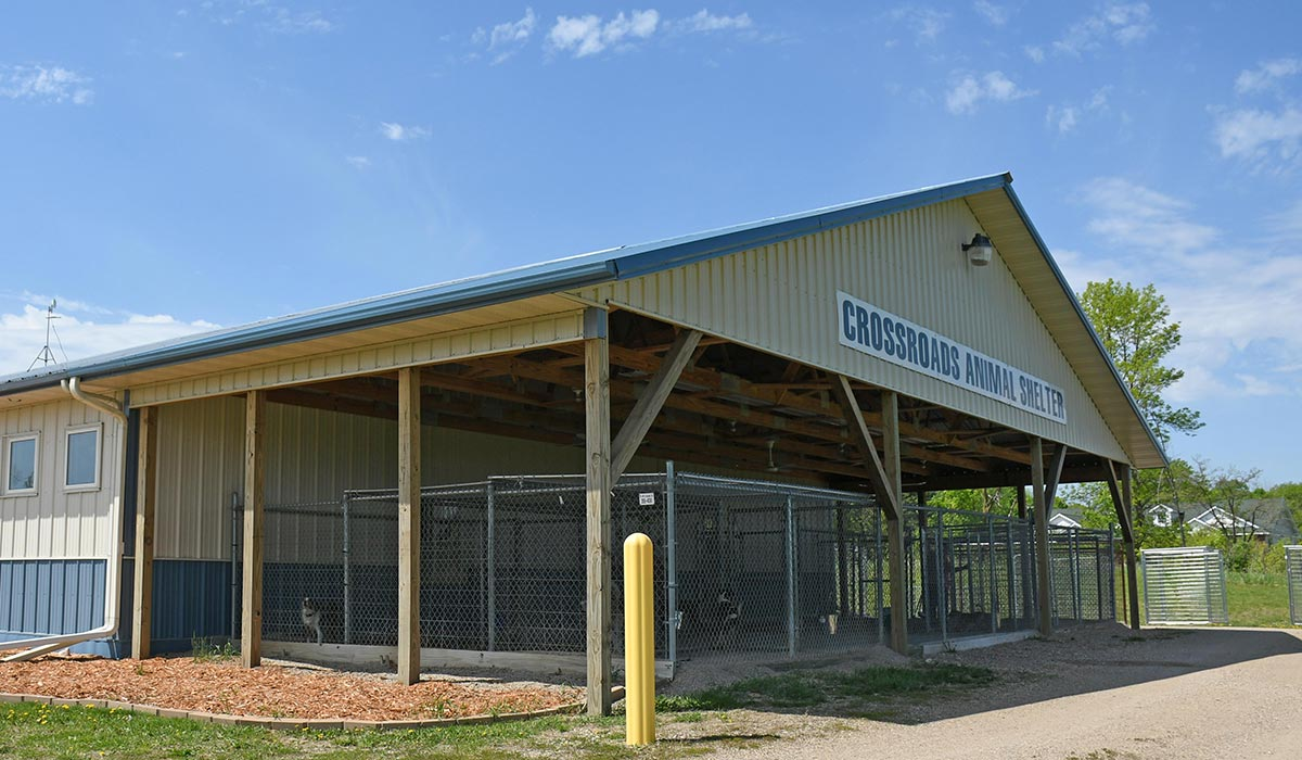 Scott Build Veterinary Gallery Crossroads Animal Shelter Buffalo Mn 3