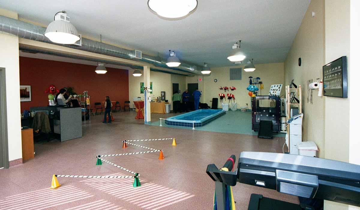 Scott Build Veterinary Gallery K9 Hydrotherapy St Louis Park Mn 2