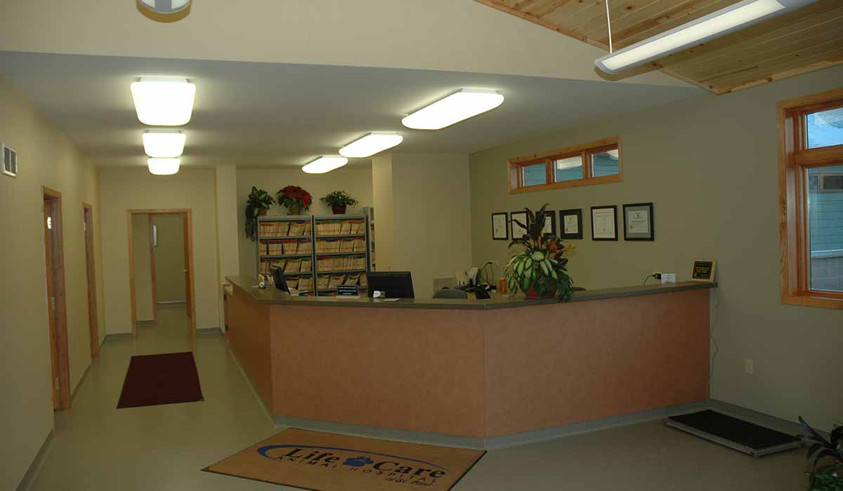Scott Build Veterinary Gallery Life Care Animal Hospital St Paul Mn 2