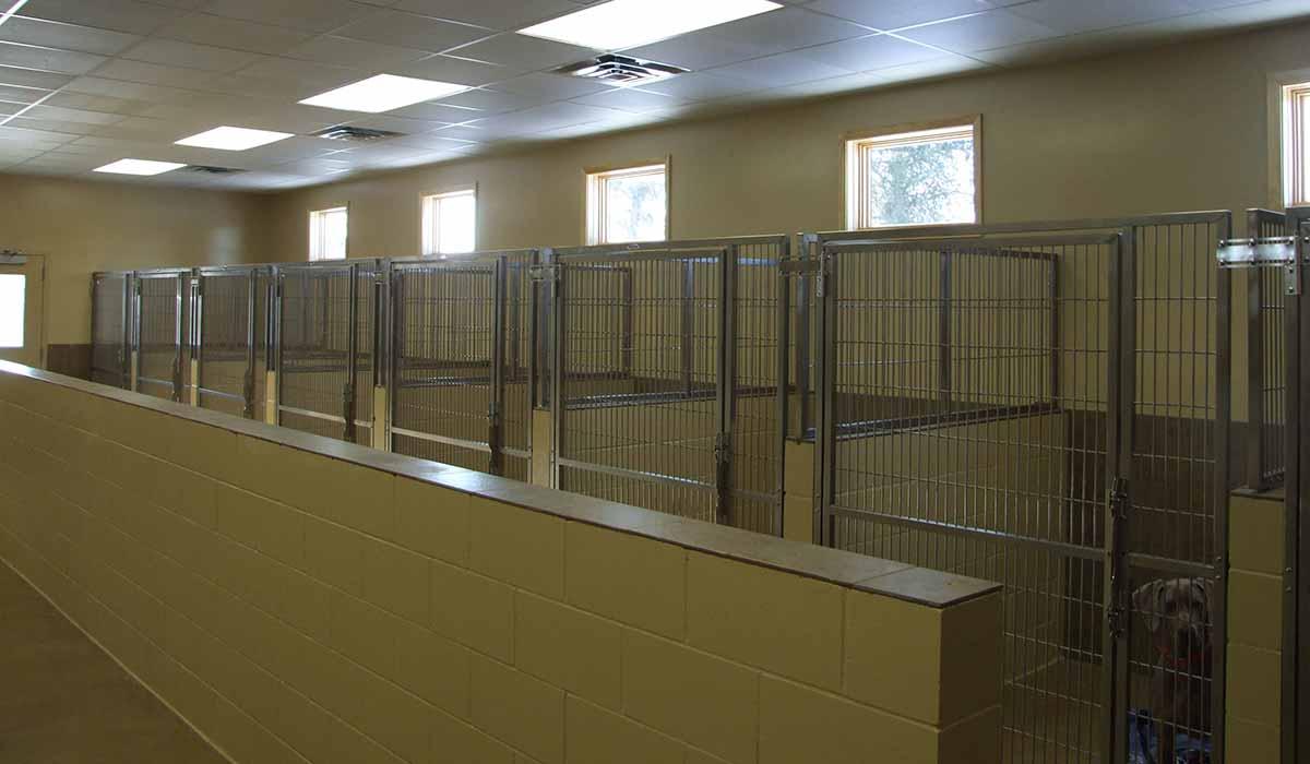 Scott Build Veterinary Gallery Mn Veterinary Associates Little Falls Mn 4
