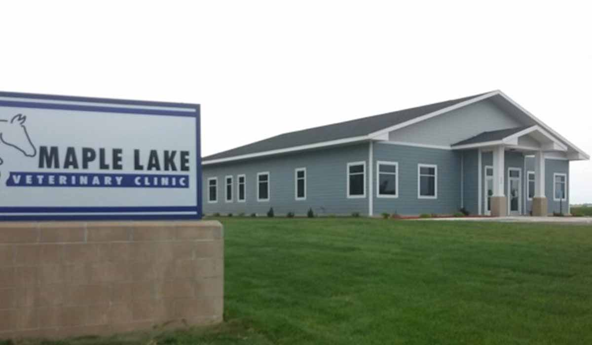 Scott Build Veterinary Gallery Maple Lake Veterinary Clinic Maple Lake Mn 1