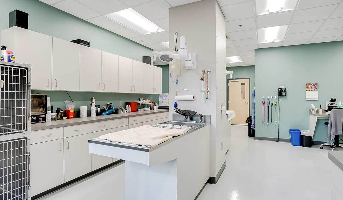 Scott Build Veterinary Gallery White Bear Animal Hospital 049