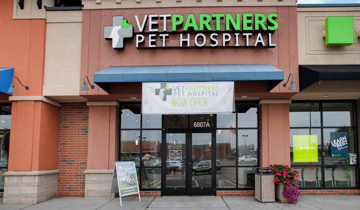 Scott Build Veterinary Gallery Vet Partners Edina Mn 1