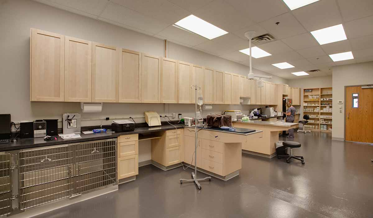 Scott Build Veterinary Gallery Vet Partners Edina Mn 2
