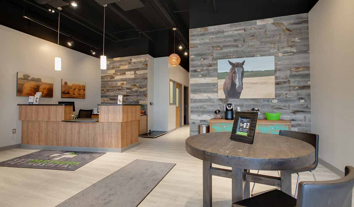 Scott Build Veterinary Gallery Vet Partners Edina Mn 3