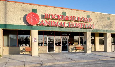 Scott Build Veterinary Gallery Rockford Animal Hospital Plymouth Mn 1