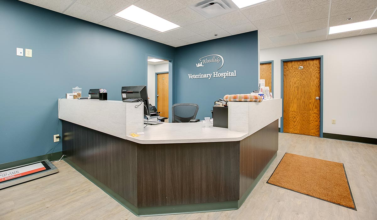 Scott Build Veterinary Gallery Woodlake Veterinary Hospital Richfield Mn 3