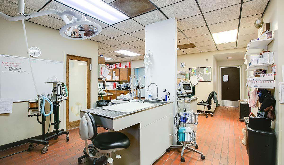 Scott Build Veterinary Gallery Woodlake Veterinary Hospital Richfield Mn 5