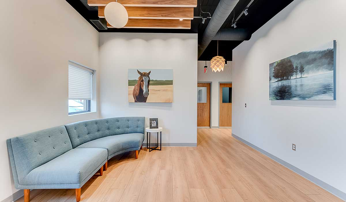 Scott Build Veterinary Gallery Build Out Vet Partners Edina Mn 7