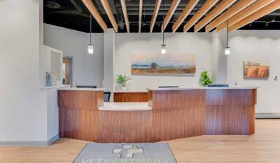 Scott Build Veterinary Gallery Build Out Vet Partners Edina Mn 8